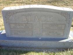 Roy Alvin Black