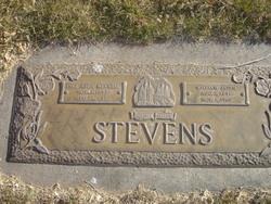 William Alden Stevens