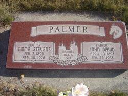 Emma Stevens <I>Hawkins</I> Palmer