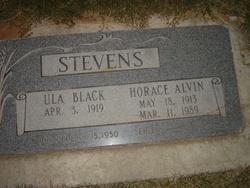 Horace Alvin Stevens