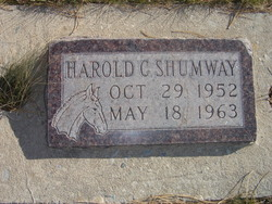 Harold Carl Shumway
