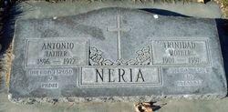 Antonio T Neria