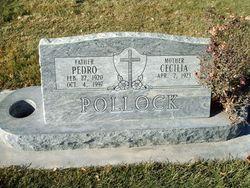 Pete Pedro Pollock