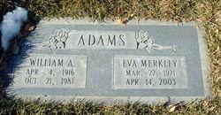 William Ancel Adams