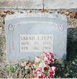 Sarah Jane <I>Steele</I> Elzy