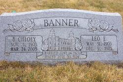 Leo Elgin Banner