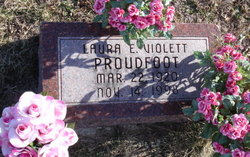Laura E <I>Violett</I> Proudfoot