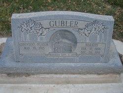 Horatio Gubler
