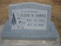 Floyd H Shamo