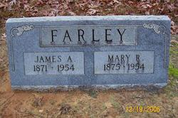 Mary Rose Farley