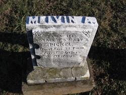 Melvin A. Pickel