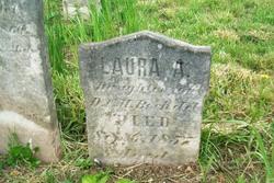 Laura A. Bechdel