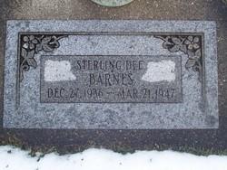 Sterling Dee Barnes