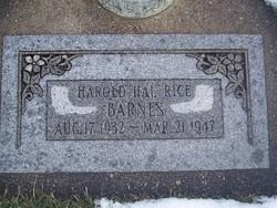 Harold Rice Barnes