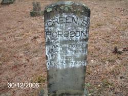 Green B Porsson