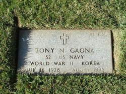 Tony N Gaona