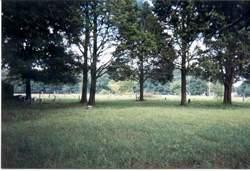 Thomas Graveyard