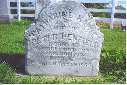 Catharine <I>Hawley</I> Penfield