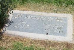 Mary <I>Davies</I> Spendlove