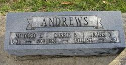 Frank B Andrews