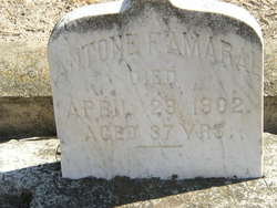 Antone F. Amaral