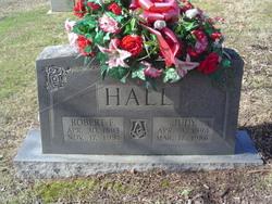 Robert E Hall