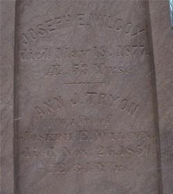 Joseph E Wilcox