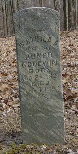 Darthula Ann <I>Padgett</I> Goodwin