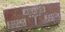 Stephen Andy Adams
