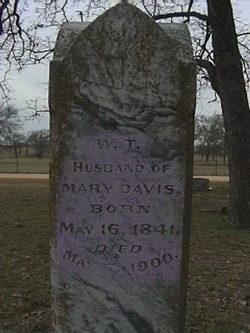 William T Davis