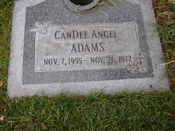 CanDee Angel Adams