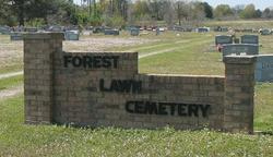 New Forest Cemetery