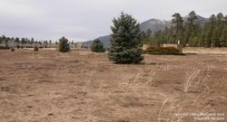 Peaceful Valley Memorial Park