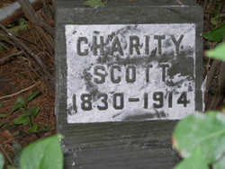 Charity Mandana <I>Phelps</I> Scott Burlingham