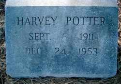 Harvey Potter