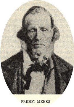 Dr Priddy Meeks