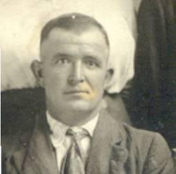 Mike William Stein