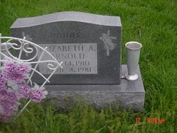 Elizabeth Ann <I>Lang</I> Arnold