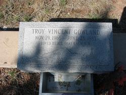 Troy Vincent Gowland