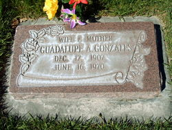 Guadalupe <I>Arceo</I> Gonzales