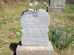 Jewel Caudle