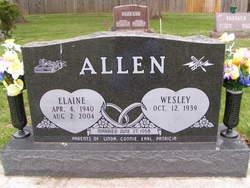 Elaine <I>Niles</I> Allen