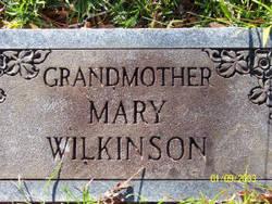 Mary Ann <I>Peebles</I> Wilkinson