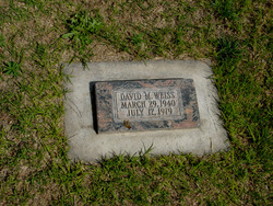 David Michael Weiss