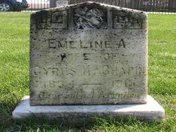 Emeline A. <I>Kennedy</I> Chapin