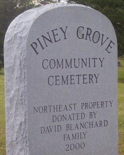Piney Grove Community Cemetery