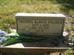 Thomas Blaine Palmer