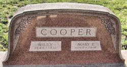 Mary Elizabeth <I>Venable</I> Cooper