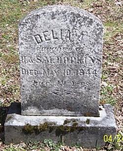 Delia A Hopkins