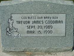 Trevor James Goodman